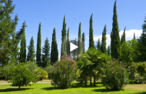 Luxury real estate on the adriatic sea coast – Fantastically park, partly with old trees